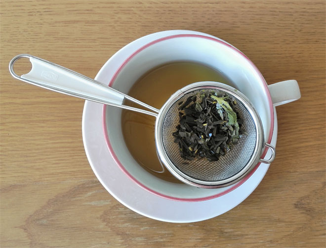 olive leaf tea infusion