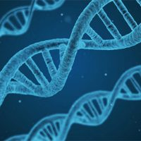 Why you should consider DNA testing in order to improve your health