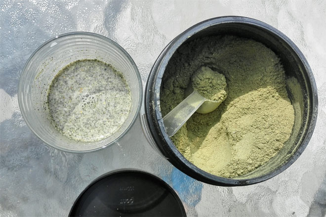 Organax daily greens powder with a scoop
