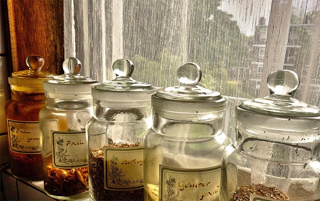 herbs in jar