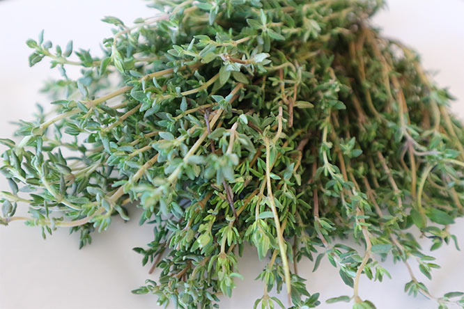 thyme herbal remedy for hay fever