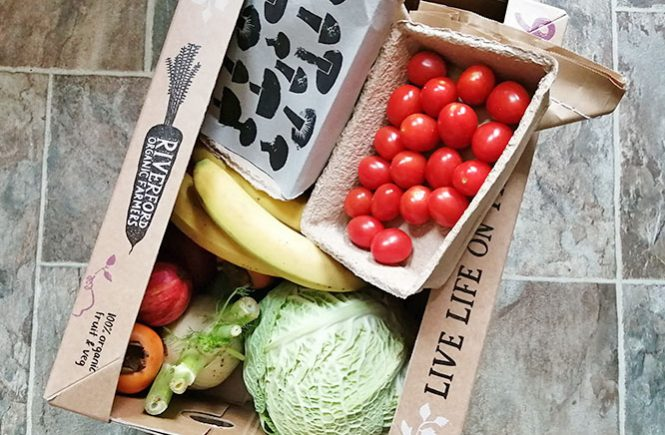 Riverford organic fruit and veg box (medium size)